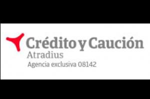creditcontrol_logo